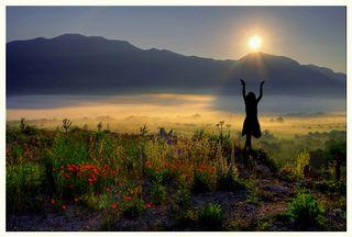 17NewSilhouette-Morning_Mist_by_DSent